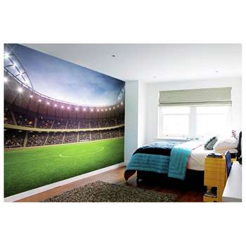 1Wall Football Stadium Wall Mural
