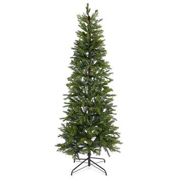 7Ft Slim Lit Fraser Fir Tree (H213.4 x W91.4 x D91.4cm)