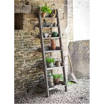 Aldsworth Shelf Ladder - Spruce (175 x 48cm)