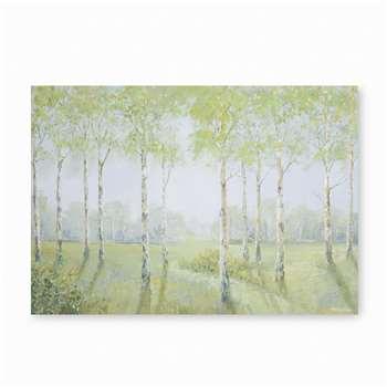 Birch Trees Canvas