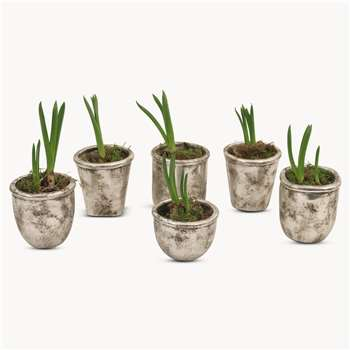 Birkdale Mixed Shape Pots in Silver Finish (H11 x W11 x D11cm)