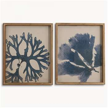 Brookby Set of 2 Framed Coral Wall Art (54 x 44cm)