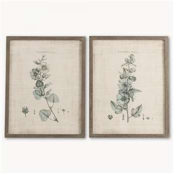 Brookby Set of 2 Framed Lavatera Wall Art (70 x 55cm)