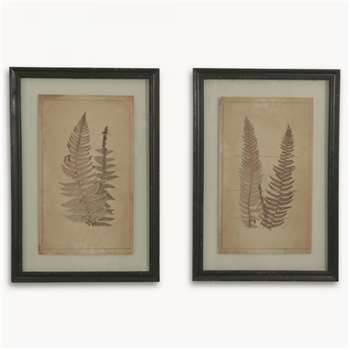 Brookby Set of 2 Prints in Frame - NO7036A (58 x 40cm)