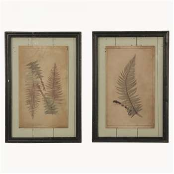 Brookby Set of 2 Prints in Frame - NO7036B (58 x 40cm)