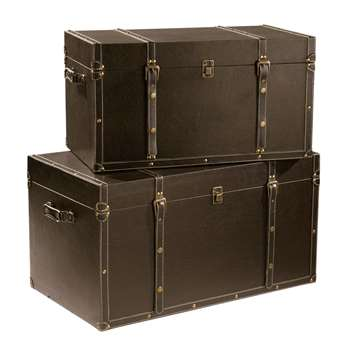 BUFFALO 2 Trunks in Brown (H40 x W75 x D43cm)