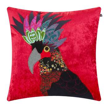 Carola van Dyke - Black Cockatoo Cushion (H50 x W50cm)