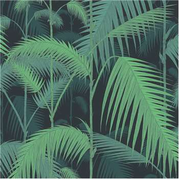 Cole & Son - Palm Jungle Wallpaper, Green on Black - 95/1003 (H1000 x W52cm)