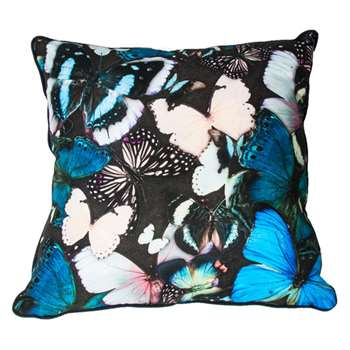 Curio Butterfly Cushion (H50 x W50cm)