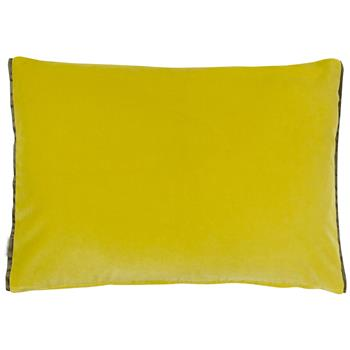 Designers Guild Cassia Velvet Cushion Alchemilla/Apple (H45 x W60cm)
