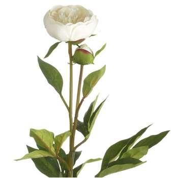 Faux Peony Flower Stem - Primavere (Height 73cm)