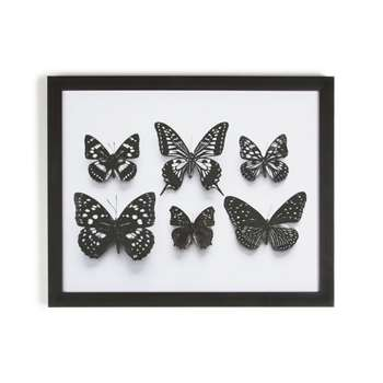 Graham & Brown Black Botanical Butterflies Framed Print (40 x 50cm)