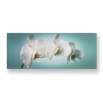 Graham & Brown Teal Orchid Wall Art (H40 x W100 x D3cm)