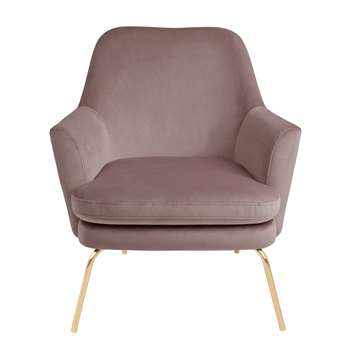 Habitat Celine Velvet Accent Chair - Pink with Gold Legs (H83 x W74 x D73cm)