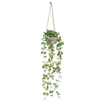 Hanging Artificial (79 x 18cm)