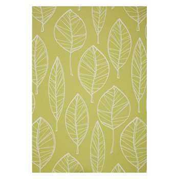 John Lewis & Partners Aspen Wallpaper, Fennel (H1000 x W52cm)