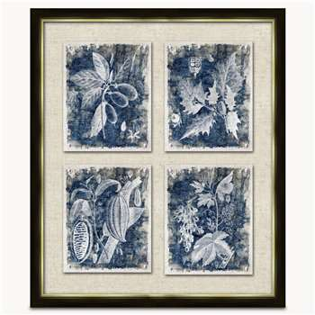 Lexington Set of 2 Framed Botanical Wall Art (H63 x W53cm)
