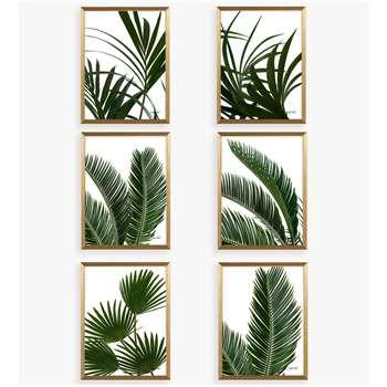 Linda Wood - Tropical Leaves Framed Prints & Mounts, Set of 6, Green/Gold (H42 x W32 x D3cm)