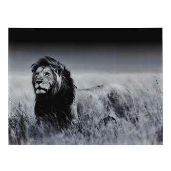 MACHAKA Lion Picture Plexiglas (120 x 160cm)
