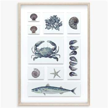 Maria Allen - Coastal Collection Framed Print & Mount, Grey (H71 x W50cm)