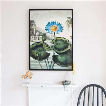 Medium Framed Blue Water Lily Print (H73 x W52 x D2cm)