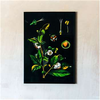 Medium Framed Tea Print (H70 x W50cm)