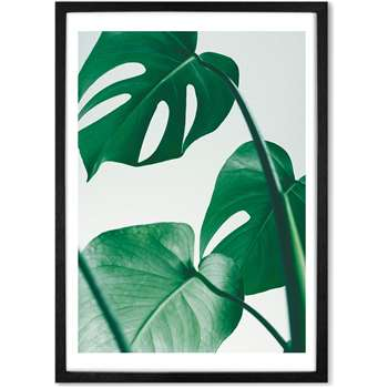 Monstera Botanical Plant Framed Wall Art Print, Green (More Sizes Available) (H44 x W33 x D2cm)