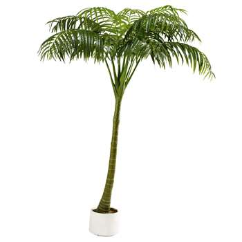OASIS artificial palm tree (210 x 154cm)