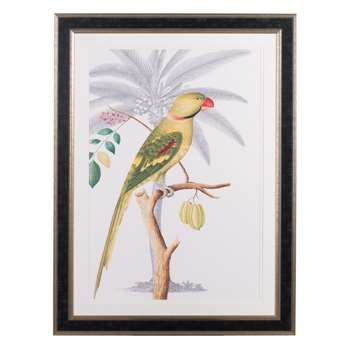 Parakeet and Coconut Palm (112 x 84cm)