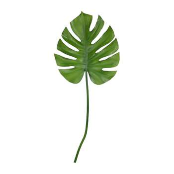 Parlane - Monstera Leaf (Height 74cm)