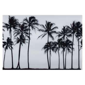 SAO PAULO Plexiglas Palm Tree Photo Print (110 x 160cm)