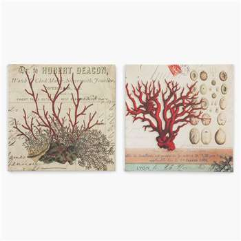Set of 2 Wall Canvases - Coral (H30 x W30 x D6cm)