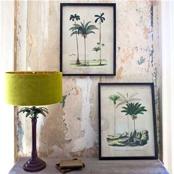Set of Two Framed Palm Tree Prints (H56 x W41cm)