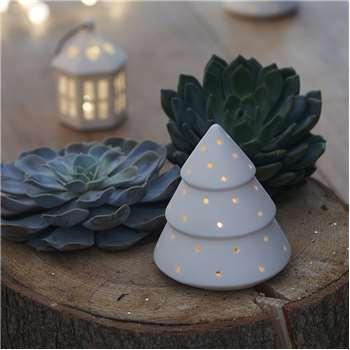 Sirius - Olina Decorative Tree Light - Medium (H12.5 x W9.5 x D9.5cm)