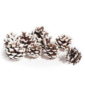 Snow-Coated Pine Cone Sachet (H15 x W15cm)