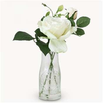 Sunbury Rose in Milk Bottle (22 x 6cm)