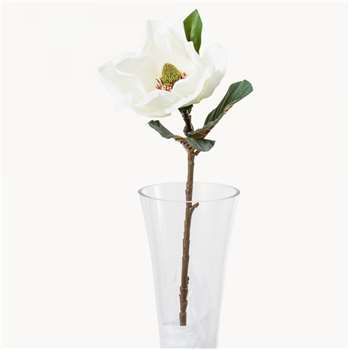 Sunbury White Magnolia (74 x 18cm)