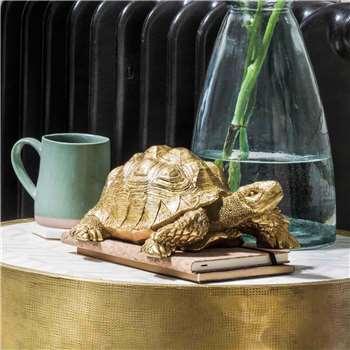 Tarantino the Tortoise (H12 x W24 x D20cm)