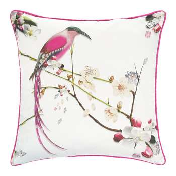 Ted Baker - Flight of the Orient Bed Cushion - (45 x 45cm)