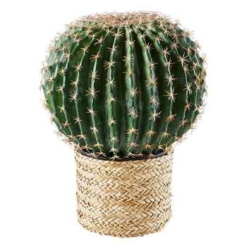 TEODORA Seagrass Cactus Garden Accessory (45.5 x 34.5cm)