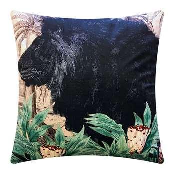 Vanilla Fly - Little Lion Velvet Cushion (H50 x W50cm)