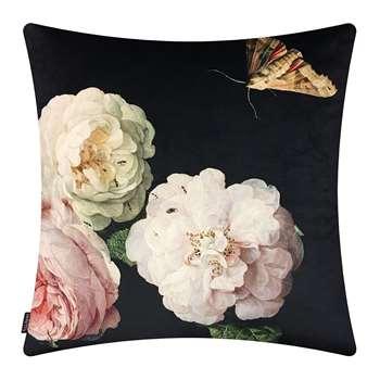 Vanilla Fly - Rosa Velvet Cushion (H50 x W50cm)