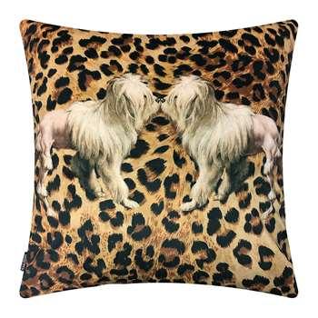 Vanilla Fly - Tigerdog Velvet Cushion (H50 x W50cm)
