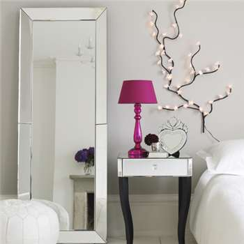Venetian Floor Mirror (H160 x W60 x D6cm)