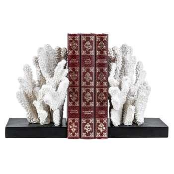 Windley Key Coral Book End Set (H18 x W20 x D12cm)