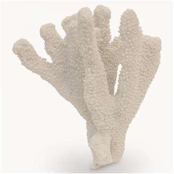 Witney Decorative Coral (18 x 17cm)