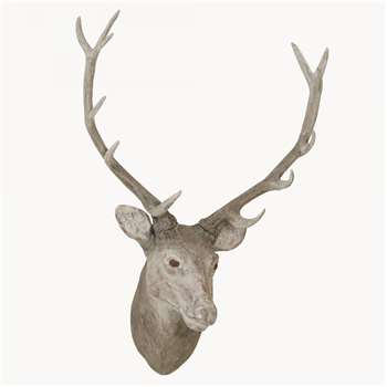 Witney Wall Mounted Deer Head (Height 80cm)