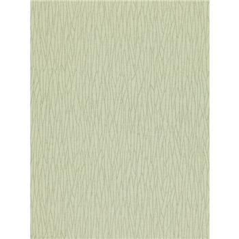 Zoffany Reeds Wallpaper, Glass